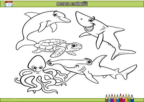 Deniz Hayvanları Boyama Etkinliği Meb Ders