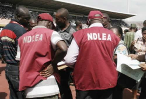 NDLEA faults police arrest of drug dealers