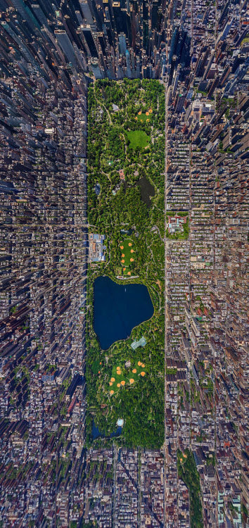 New York City's Central Park from Above