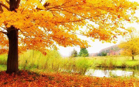 wallpapers autumn scenery desktop wallpapers