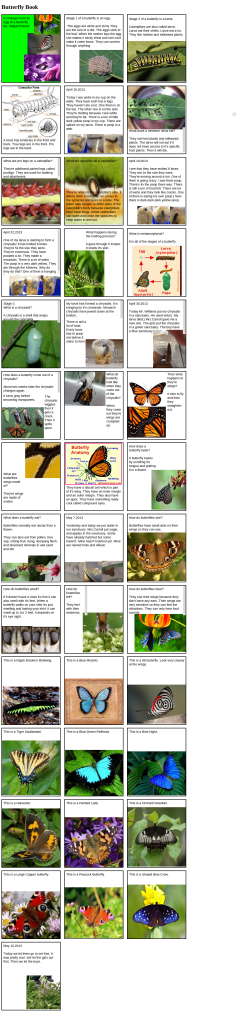 StoryKit Viewer: Butterfly Book second grade carroll