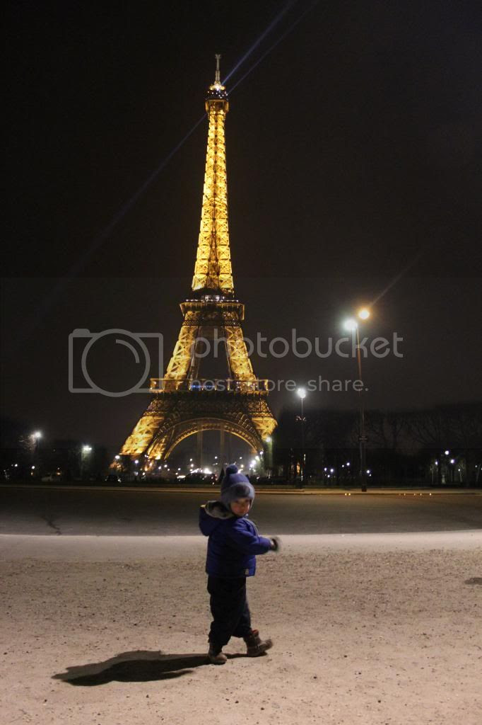 Teddy in Paris photo TeddyEiffelTower_zpse6837291.jpg