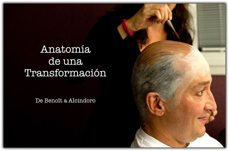 anatomia3