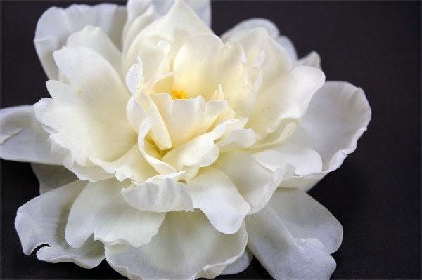 Silky Petals Rose Hair Accessory