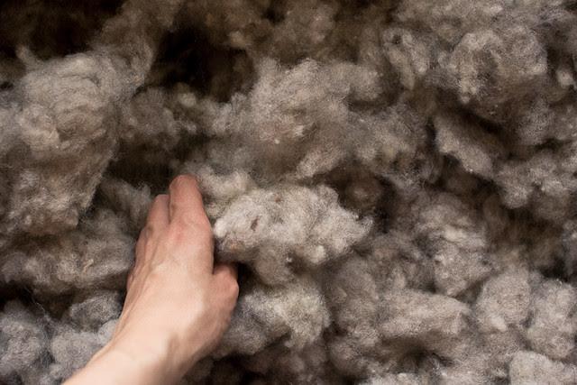lã de ovelhas de S.Miguel