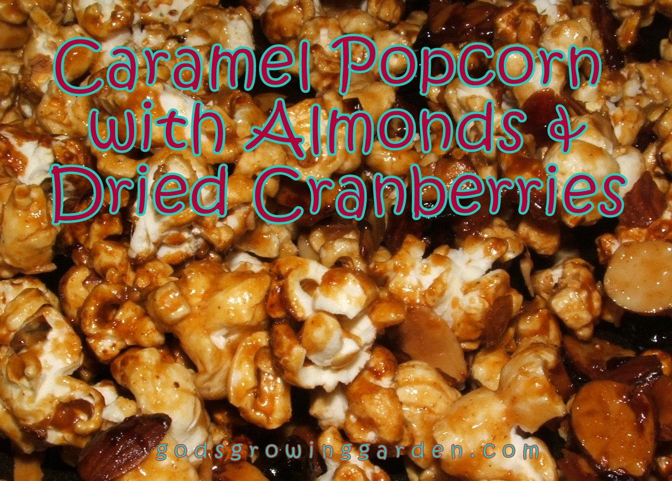 caramel popcorn by Angie Ouellette-Tower for godsgrowinggarden.com photo 009_zps93cc7ac8.jpg