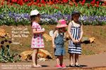 Little Girls, Spring, 2010, Araluen Botanic Park, Australia, Toa Payoh Vets