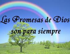 Resultado de imagen de promesas biblicas cristianas