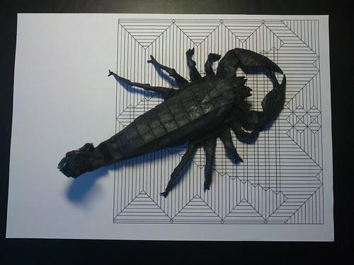 emperor scorpion BP