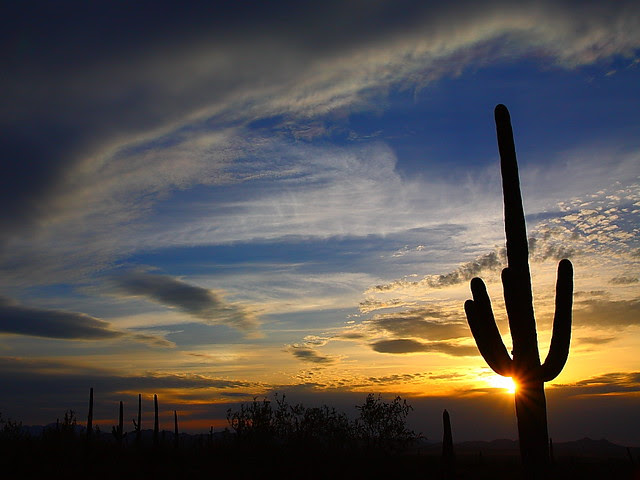 IMG_6464 Sunset, Saguaro National Park