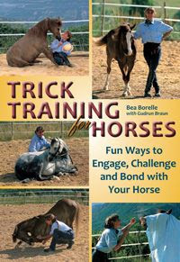 Trick Training For Horses Bea Borelle