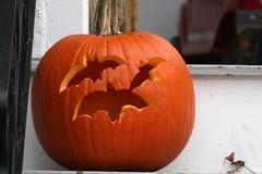 pumpkin 042