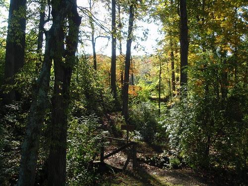 arboretum trails