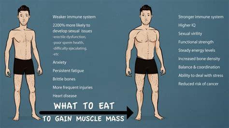 eat  day  gain muscle mass