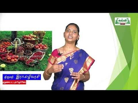 11th Psychiatry உணவு அறிவியல் அலகு 3 பகுதி 1 TM  Kalvi TV