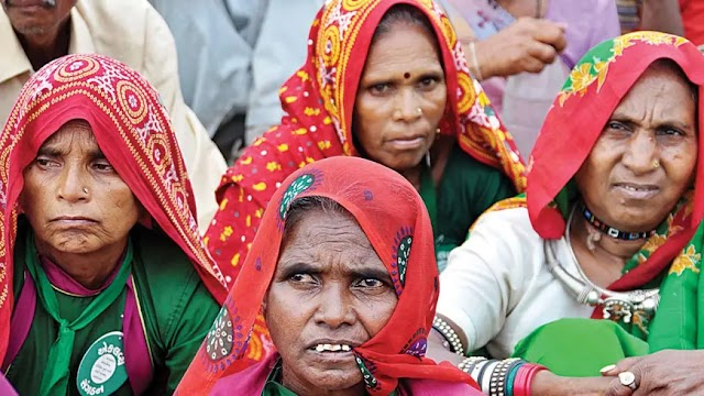 Tribal eviction: Gujarat to file review petition