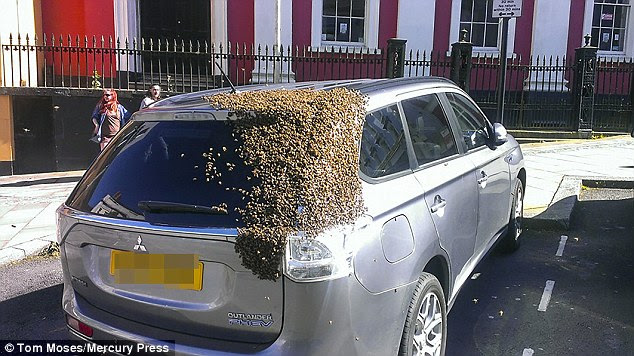 The silver Mitsubishi Outlander which became attacked by a swarm of bees in the high street in Haverfordwest