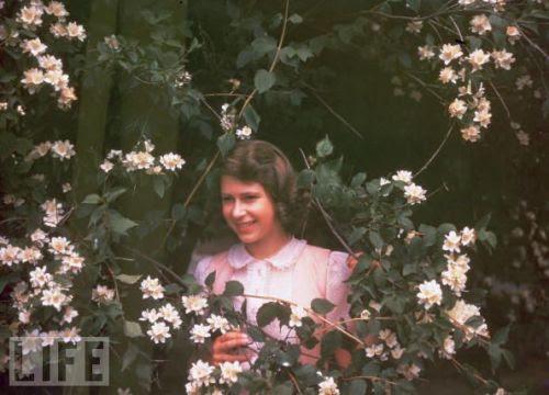 queen elizabeth young life. life: Elizabeth II: The