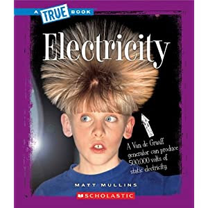 Electricity (True Books)