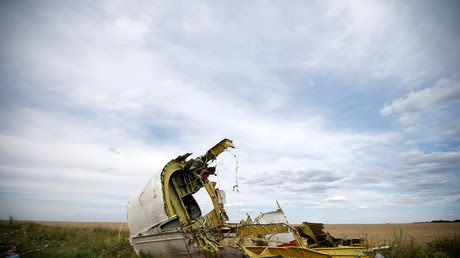 Moscow can't accept 'unfounded conclusions' on MH17 downing – Russia's UN envoy