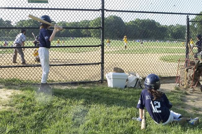 little league, brooklyn