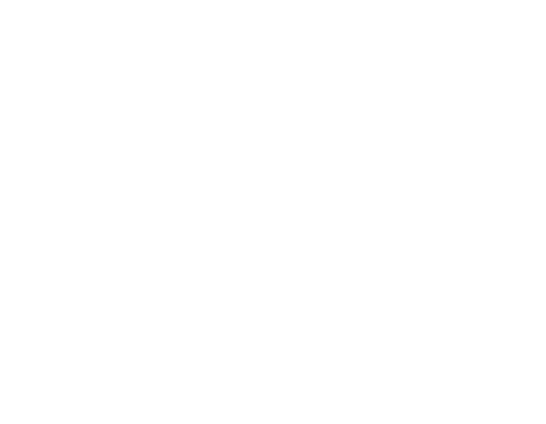 Tree Service And Shrub Experts Northvale Nj Kens Tree Care