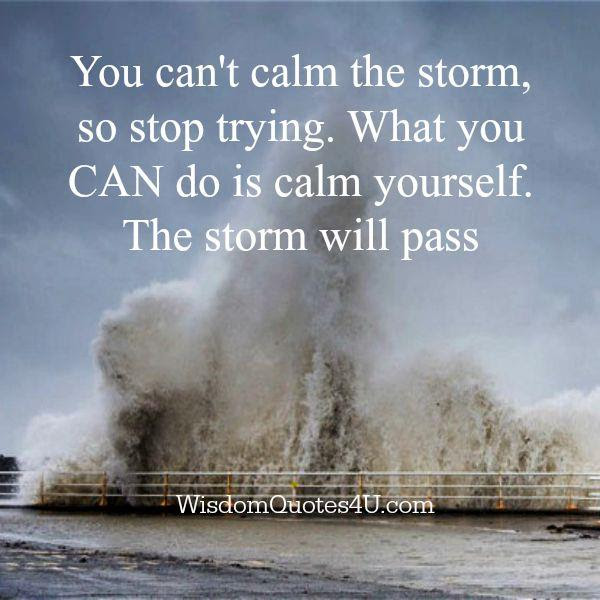 You Cant Calm The Storm Wisdom Quotes