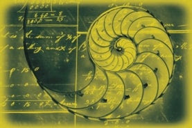 math shell