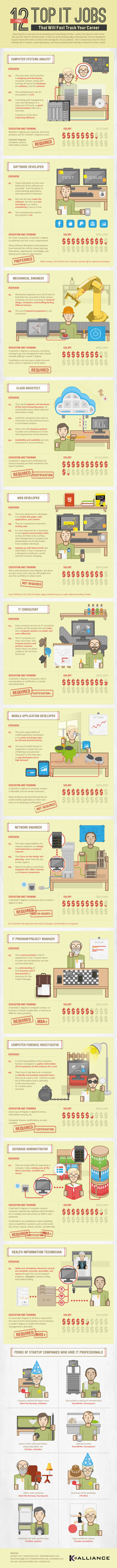 The 12 Top IT Jobs That Will Fast Track Your Career - infographic