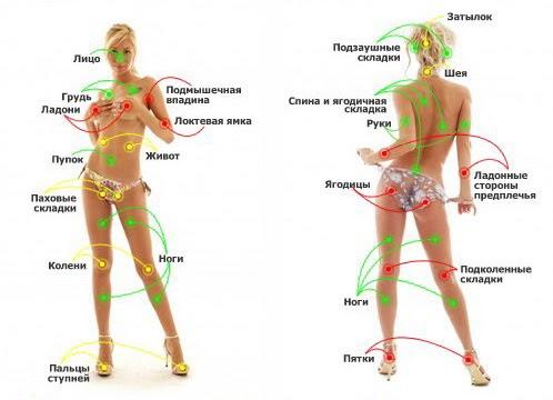 У девы все - от промежности до груди - реагирует на прикосновения языка, легкие поглаживания пальцами или чуть заметные касания волосами.