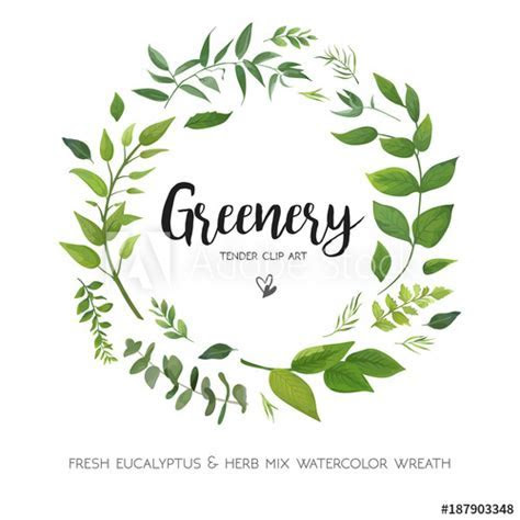 Floral vector card Design with green Eucalyptus fern