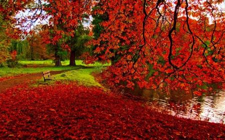 7400 Koleksi Romantic Autumn Wallpaper HD Terbaik