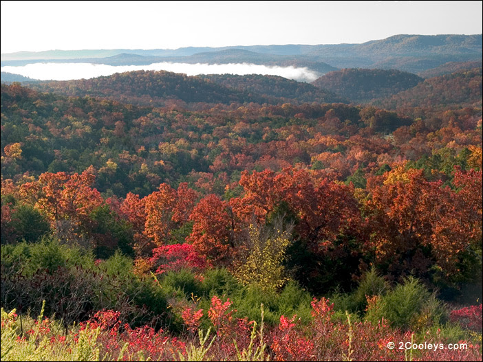 Foggy view of the White River, Hwy 341 Overlook, Baxter County, Arkansas