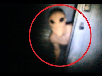 Most Terrifying Creatures Caught On Tape 2015