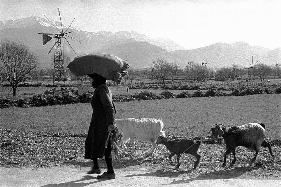 Οι αγρότισσες δεν κάνουν μισές δουλειές...