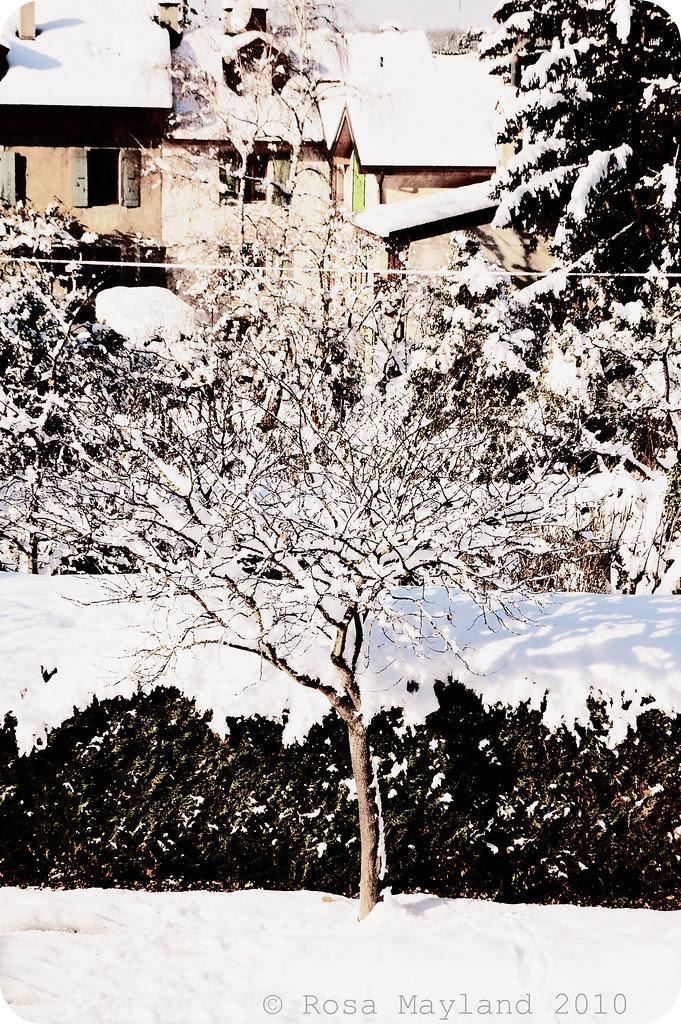 Snow Veyrier 16.2 bis