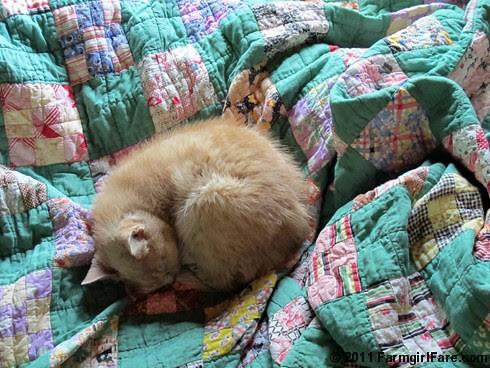 Green Vintage Quilt Love 4 - FarmgirlFare.com