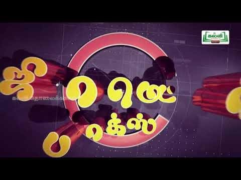 ஜியாமெட்ரி பாக்ஸ்Std 8 Maths Linear Equations Kalvi TV