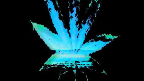 Landscapes black marijuana wallpaper   AllWallpaper.in
