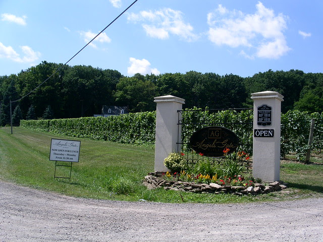 Angels Gate Winery - 1 August 2011 - NiagaraWatch.com