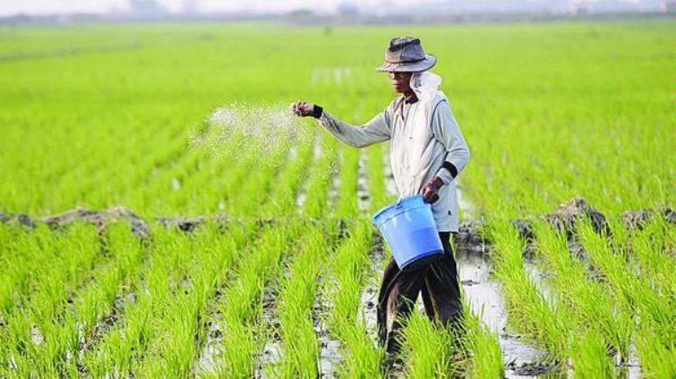 Sebutkan Jenis Usaha Yang Termasuk Dalam Bidang Agraris Sebutkan Mendetail