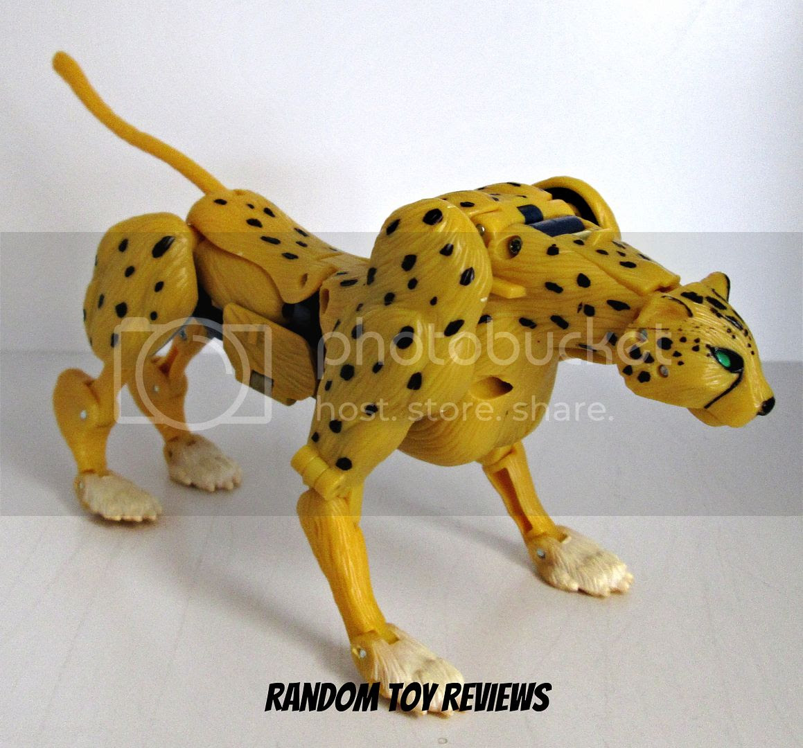 Henkei! Cheetor photo Rhinox026_zpsafcc18b6.jpg