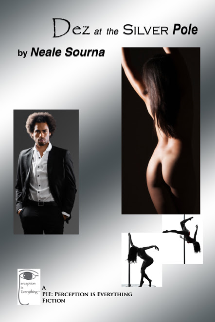 Dez at the Silver Pole_ebook cover