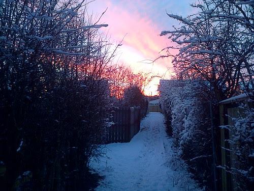 Sunrise over the allotment Jan 13