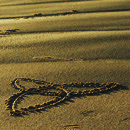 sand triqutra pic