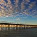 Hervey Bay, Queensland, Australia, Urangan Pier IMG_3701_Hervey_Bay