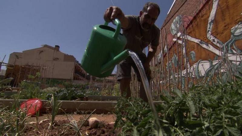 La falta de suministro de agua es el principal problema en el área de cultivo