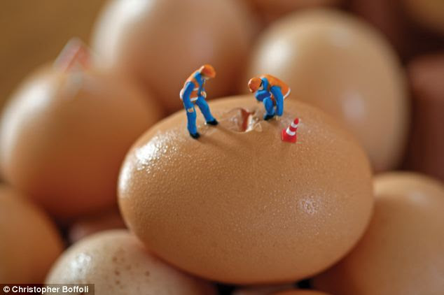 Eggs-plorers: Keep those hard hats on as you venture in, boys - looks like you could be at risk of shell shock