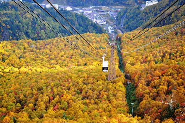 2019 Japan Autumn: Forecast & Where To See Autumn Foliage
