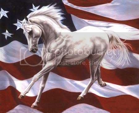 horse-flag Pictures, Images and Photos